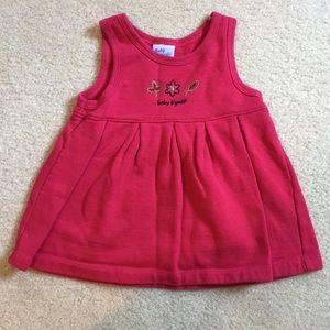 EUC baby b'gosh fleece lined dress